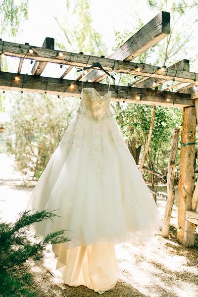 Robinson Wedding-9.jpg
