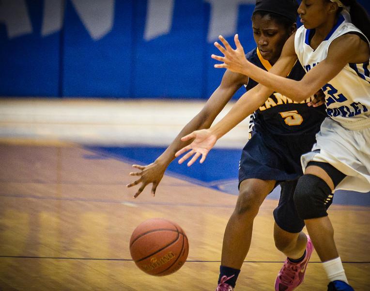 Basketball Girls Varsity vs  Lamar 01-21-14-19