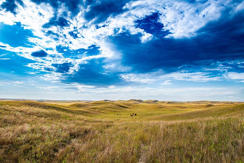 Horn Ranch-1302.jpg