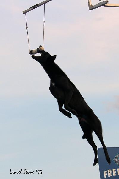 2015.8.21 Dock Dogs Lambeau-142.JPG