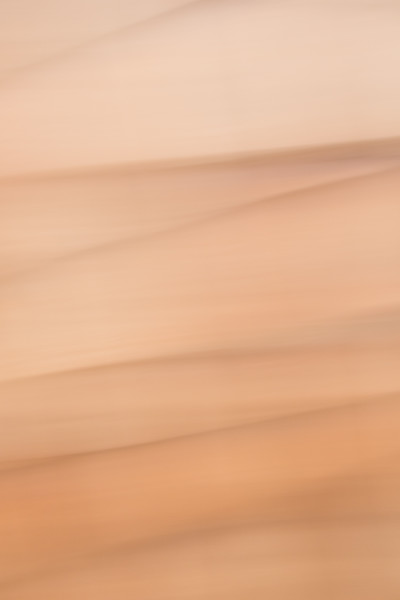 Abstract soft beige colors with a few lines give a relaxed feel