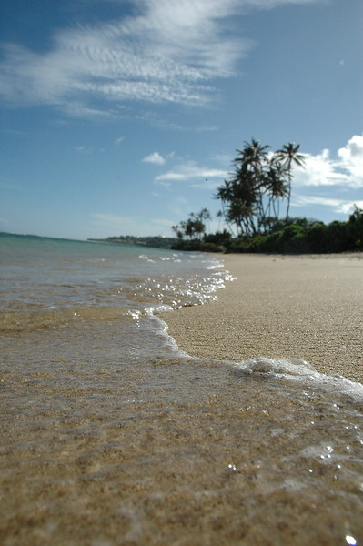 Hawaii - Kahala Beach-110.JPG