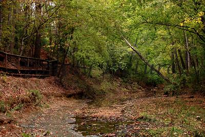 Lanana Creek029