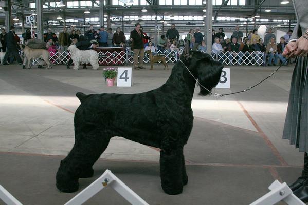 Onondaga Kennel Association Show - March 29, 2008