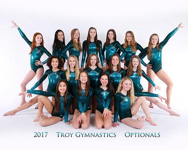 Troy Gymnastics 2017
