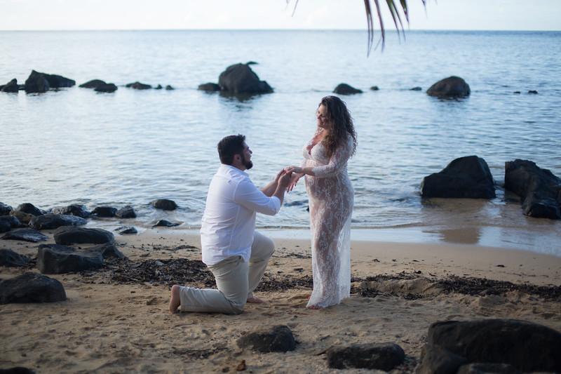 kauai-maternity-15.jpg