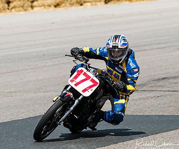 Race 19 P3-Heavy  Hodgson Cup