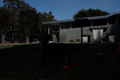 Capture-JPEG sRGB 100% (85 Proof Quality)