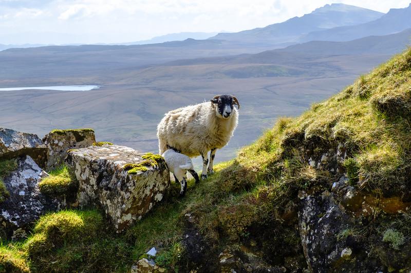 20190506 Isle of Skye 392.jpg