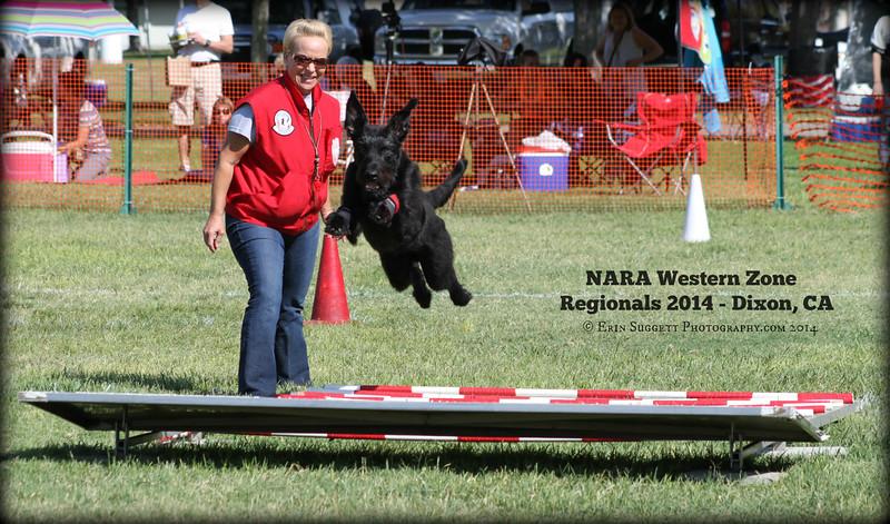 NARA WZ Regionals 2014 - Dixon, CA Sept 20th