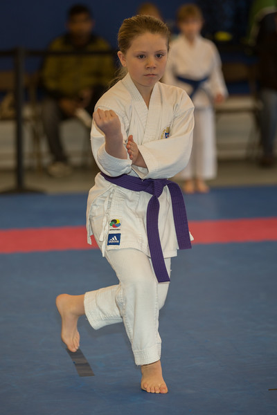 Massachusetts Karate Championships - December 2012
