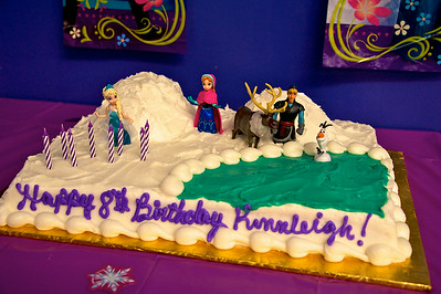 Kinsleigh's 8th Birthday Party