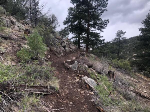 DudBob-Trail.png