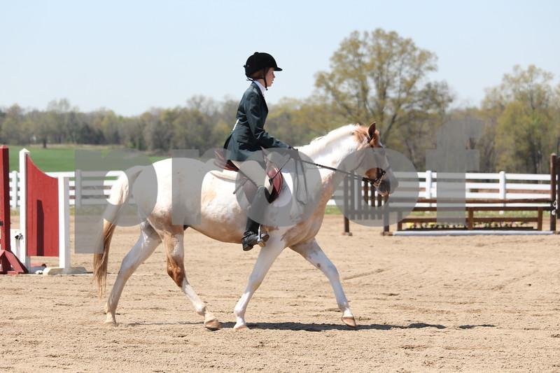 Pleasure Pony