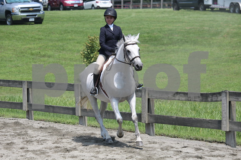 PONY EQ/HUNTER/EQ ON FLAT