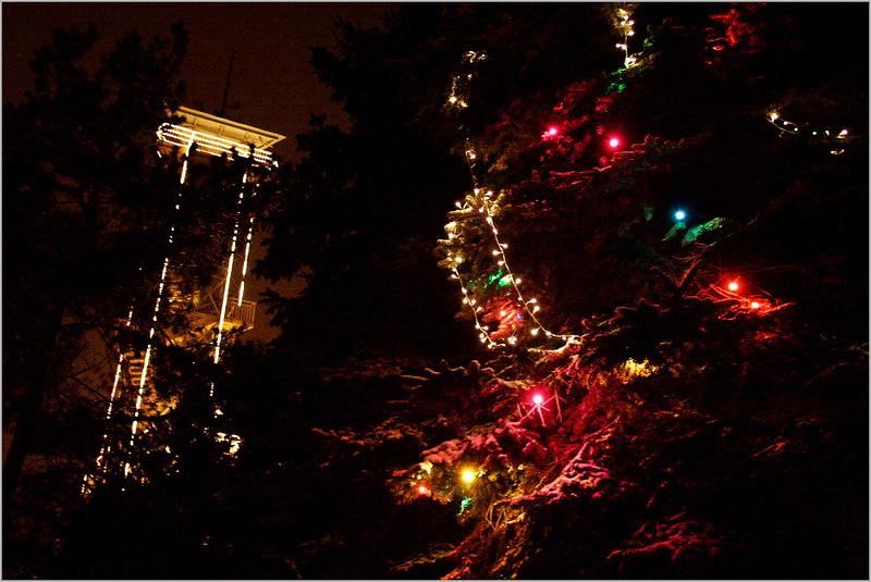Vánoce v ZOO Olomouc