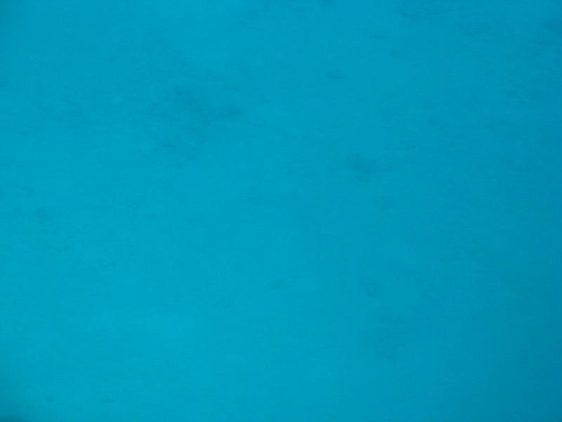 Australia - Great Barrier Reef-6.JPG