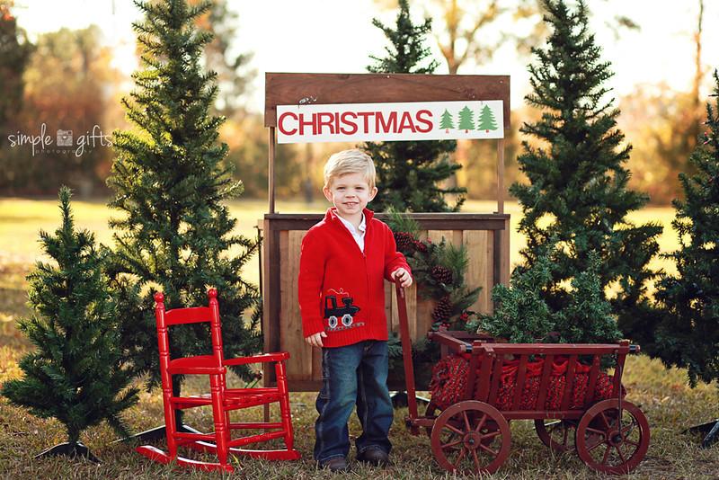 christmasnminis-150copylearn.jpg
