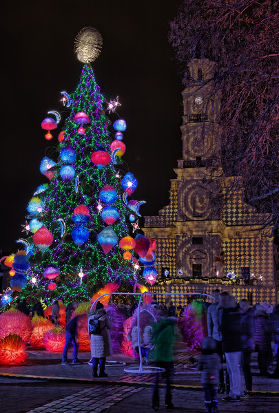 Christmas Tree at the Town Hall Square