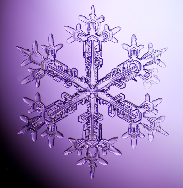 snowflake-3029-Edit.jpg
