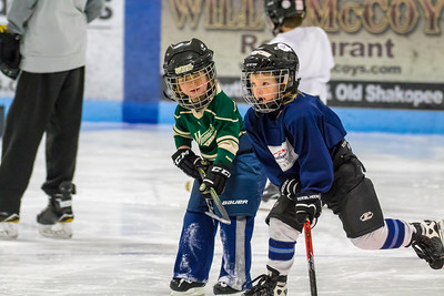 2018 Learn to Play Hockey  Event