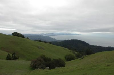 Marin Headlands in Green