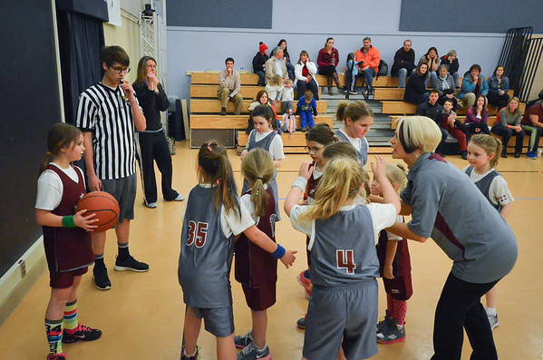Little Lady Falcons
