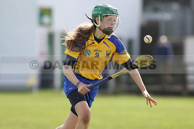 Wicklow v Meath U16 2017