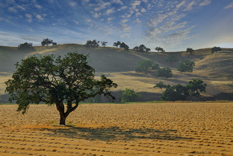 Santa Ynez Valley 4