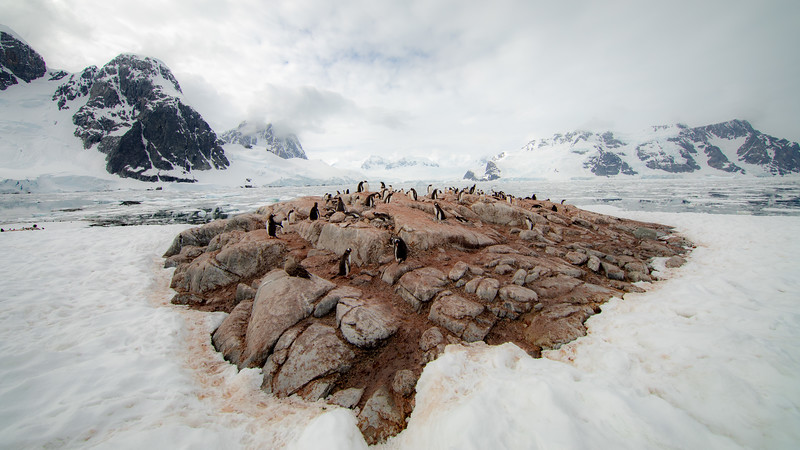 2019_01_Antarktis_04502.jpg