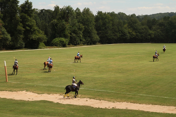 TLF Eight Annual Charity Polo Match