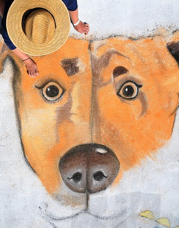 2020 SUNDAY Lake Worth Street Painting Festival