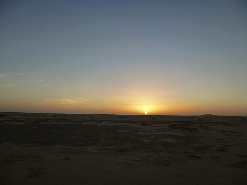 12 Oasis at Farafra143.JPG