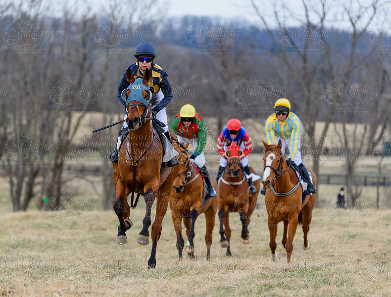 Sixth Race - The Col. Richard Henry Dulany Memorial