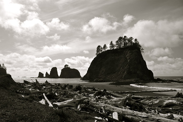 Olympic National Park Coast and Makah Reservation