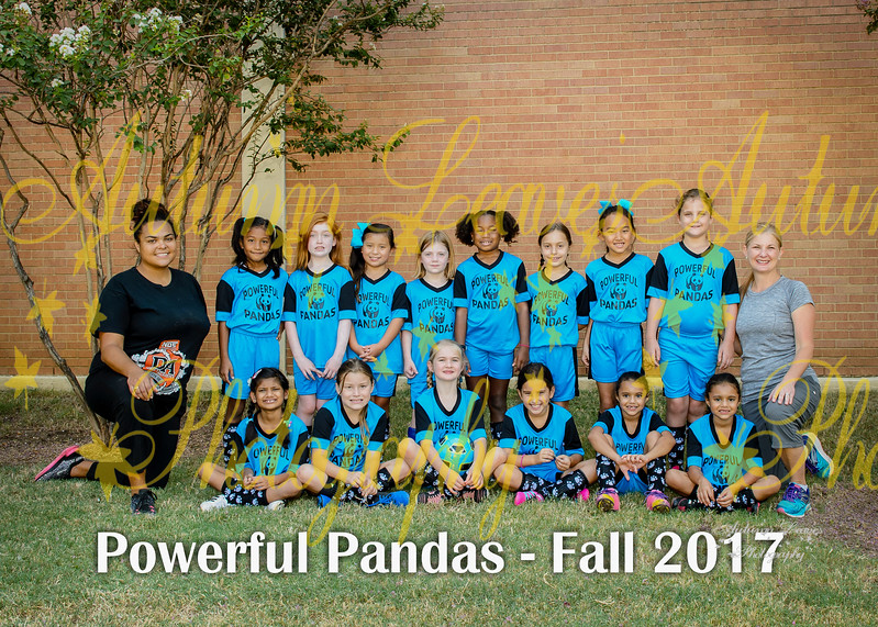 20170916 - #T6 2G Power Pandas