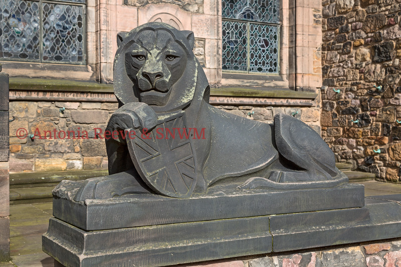 SNWM Front, Lion