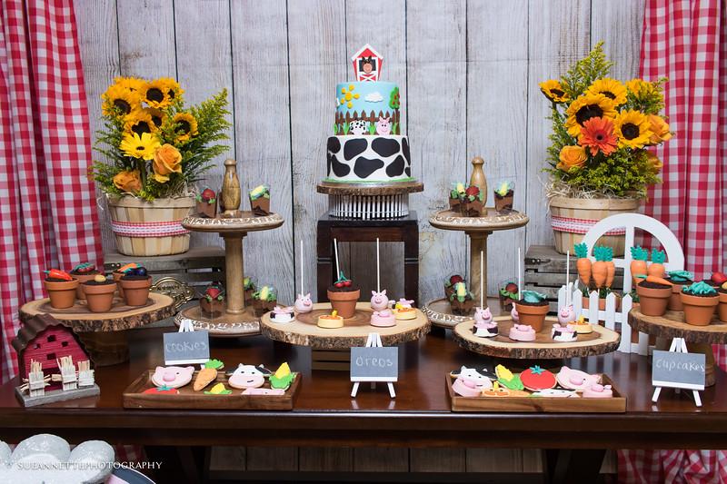 Thomas & Ethan's Barn Birthday