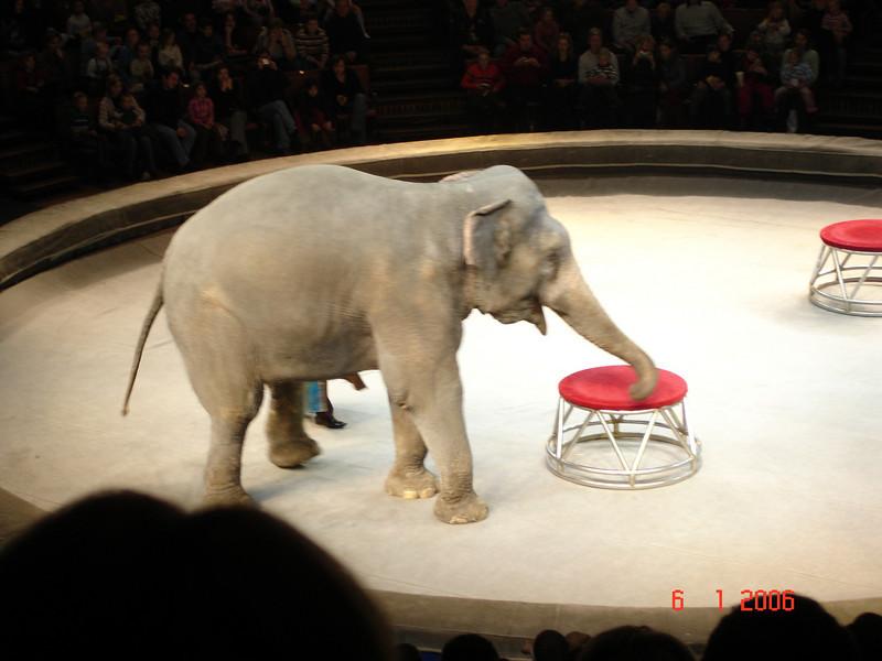 2006-01-06 Цирк с Капраловыми 34.JPG