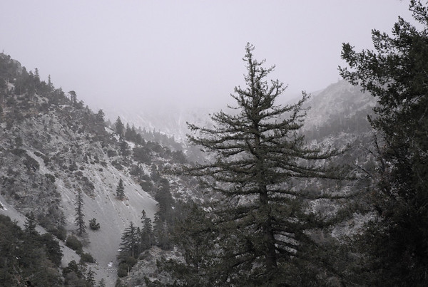 Mt. Baldy December 28, 2007