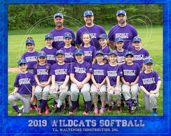 Hollberg Softball Wildcats