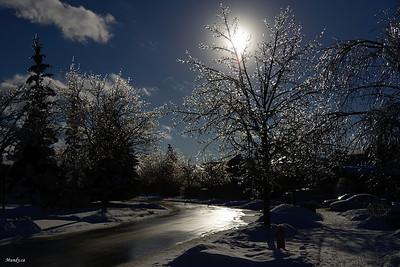 2013 Ice Storm