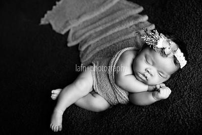 Khorey {Newborn}
