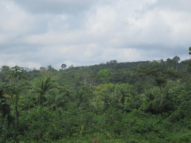013_En route. Entre Abidjan et Aniassué.JPG