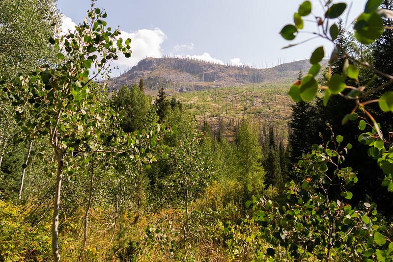 Colorado2018-MountZirkel-0013.jpg