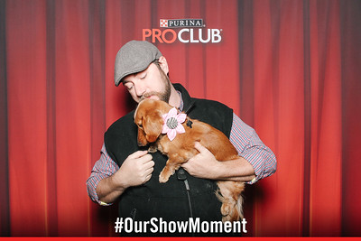 day 2 - purina national dog show