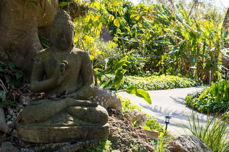 naples_botanical_garden_0023-LR.jpg