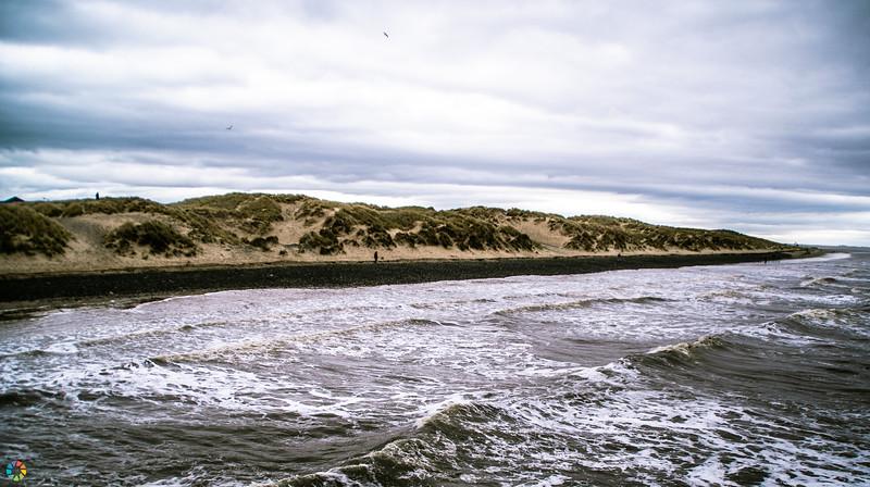 Coast-Mar19 (1 of 3).jpg