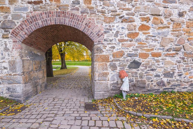 Oslo-6100696.jpg