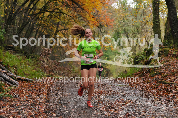 Betws y Coed Trail Challenge at 2kM